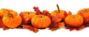 autumn-border-pumpkins-leaves-over-white-background-45439576